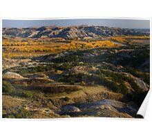 North Dakota Landscape Poster