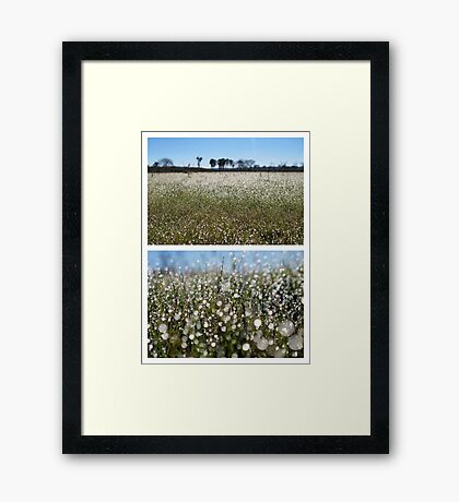Morning Frost on Dangars Lagoon - Diptych Framed Print