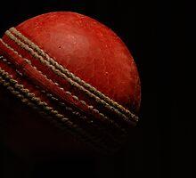 Planet Cricket by DeeEss