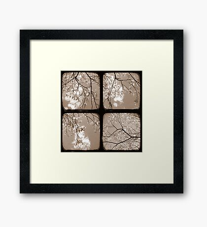 Look Through My Window - TTV Framed Print