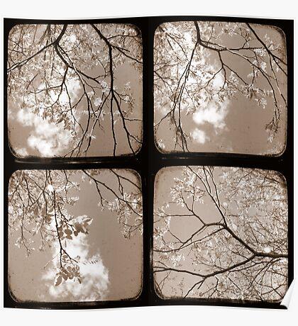 Look Through My Window - TTV Poster