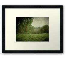 Zen Garden Framed Print