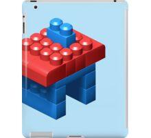3D Little House iPad Case/Skin
