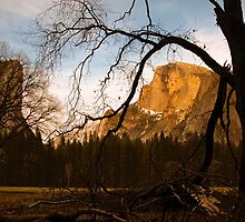 Vintage Half Dome by Mark Ramstead