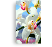 Beautiful Orchids Canvas Print