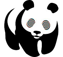 Trippy Panda Photographic Print