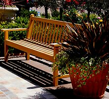 Sit and Enjoy The Day by Marie Sharp