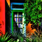 Tucson Doorway With Orange by Lois  Bryan