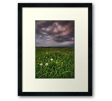 Dandy Field v3 Framed Print