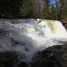 Dismal Falls by virginian