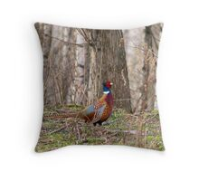 Pheasant wondering Throw Pillow