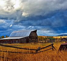 Barns of Mormon Row by Brian Kerls  photography