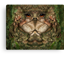 Woody 90 Canvas Print
