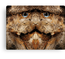 Woody 79 Canvas Print