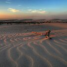 Sunset at Birubi Beach Sand Dunes 3 by Mike Salway
