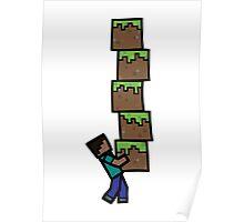Steve's Grass Blocks Poster