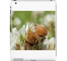 Untattered Wings iPad Case/Skin