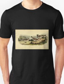 James Audubon Vector Rebuild - The Birds of America - From Drawings Made in the United States and Their Territories V 1-7 1840 - Lapland Lark Bunting Unisex T-Shirt