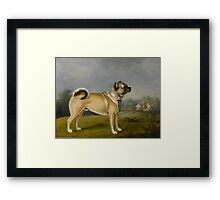 Loud Pugs