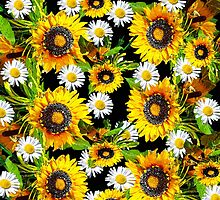 Sunflowers and Daisies by Saundra Myles