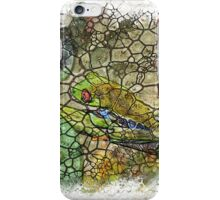 The Atlas of Dreams - Color Plate 174 iPhone Case/Skin