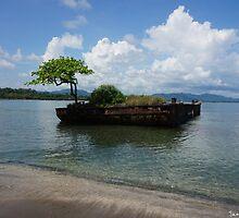 Garden in the Sea, Costa Rica by JaceeDesigns