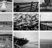 Oceanside Collage Sticker