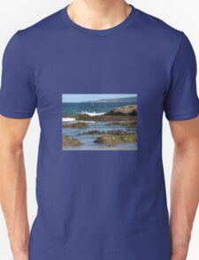 ROCK SCULPTURES T-Shirt