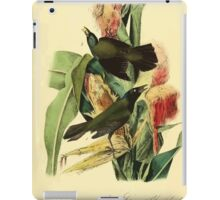 James Audubon Vector Rebuild - The Birds of America - From Drawings Made in the United States and Their Territories V 1-7 1840 - Common or Purple Crow Blackbird iPad Case/Skin