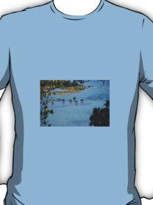 SWANS AT BLACK ROCK BEACH T-Shirt