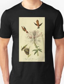 James Audubon Vector Rebuild - The Birds of America - From Drawings Made in the United States and Their Territories V 1-7 1840 - Ruff Necked Hummingbird T-Shirt