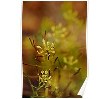 Abstract In Spring Poster