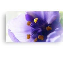 Macro in Purple Canvas Print