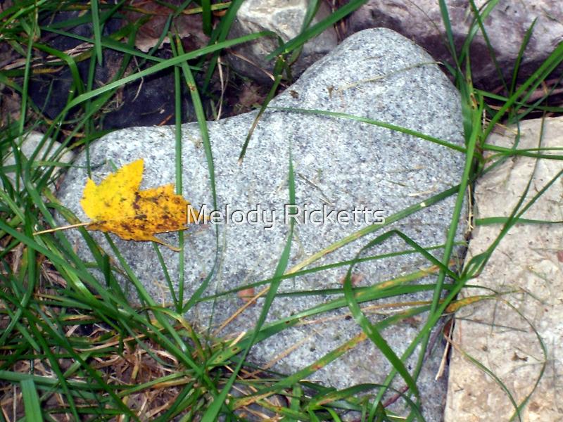 Heart of Stone by Melody Ricketts