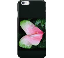 The Anthurium Flower ~ A History iPhone Case/Skin