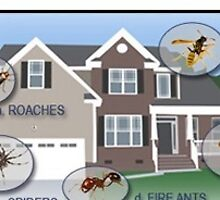 Commercial Pest Control Service by officepestcontrol control