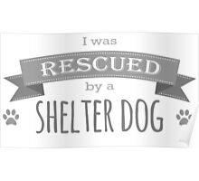 Shelter Dog Version One Poster