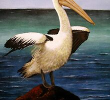 Pelican on Rock by Jennie Liebich
