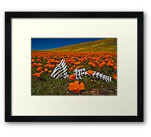 Poppies and Bones Framed Print