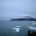 Pauanui New Zealand Fog by Vicktorya Stone