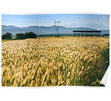 Electric Wheat Field Poster