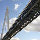 Batman Bridge by Brett Rogers