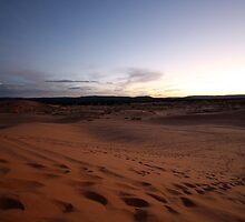 Coral Pink Sand Dunes State Park by krasakala