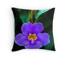 Emerging from the Gloom. Throw Pillow