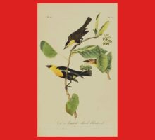 James Audubon Vector Rebuild - The Birds of America - From Drawings Made in the United States and Their Territories V 1-7 1840 - Saffron Headed Marsh Blackbird Kids Tee