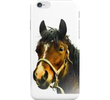 Endearing Look iPhone Case/Skin