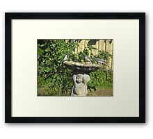 Wild Birds in for a Drink Framed Print