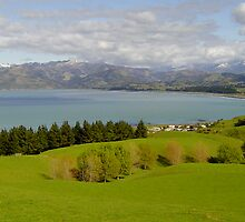 South Kaikoura by ijam357