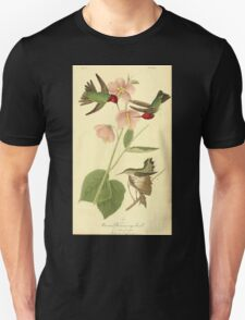 James Audubon Vector Rebuild - The Birds of America - From Drawings Made in the United States and Their Territories V 1-7 1840 - Anna Hummingbird T-Shirt