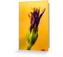 Torch for the Plant Olmpics. Greeting Card